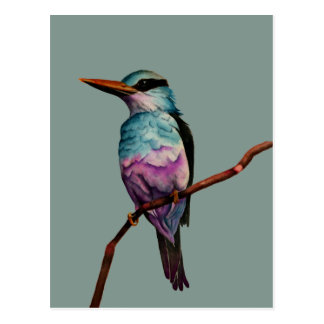Cotton Candy Color Bird Painting Postcard