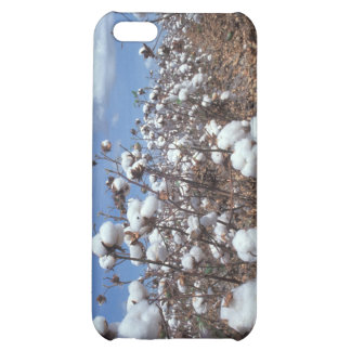 Cotton Field iPhone 5C Cover