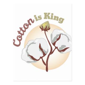Cotton King Postcard