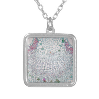 Cotton leaf under the microscope silver plated necklace