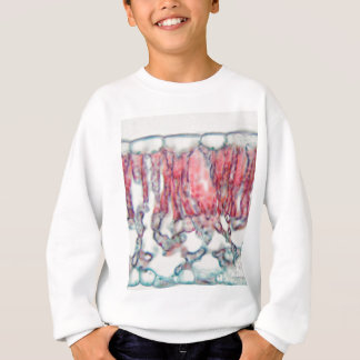 Cotton leaf under the microscope sweatshirt