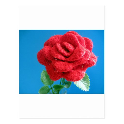 Cotton Red Rose Postcards