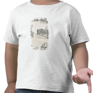 Cotton Spinning I Shirts