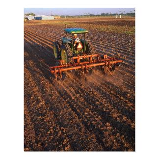 Cotton test field 21.5 cm x 28 cm flyer