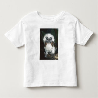Cotton-top Tamarin Saguinus oedipus) Captive, Toddler T-Shirt