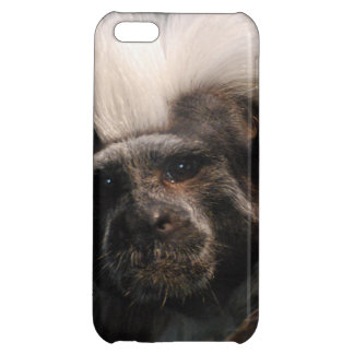 Cotton Topped Tamarin Monkey iPhone 5C Cover