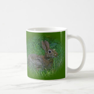 Cottontail Bunny Rabbit Cordinating Items Mugs