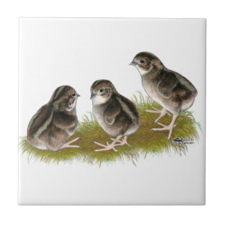 Coturnix Quail Chicks Ceramic Tile