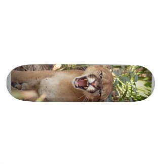 Cougar 001 18.1 cm old school skateboard deck