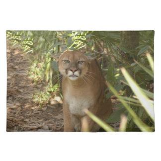 Cougar 002 placemat