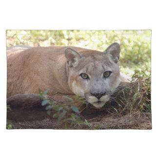 Cougar 006 place mats