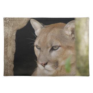 Cougar 013 placemat
