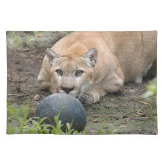 Cougar 015 placemats