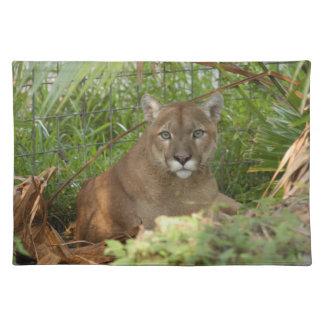 Cougar 016 placemats