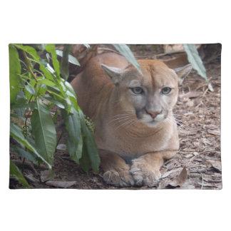 Cougar 018 placemat