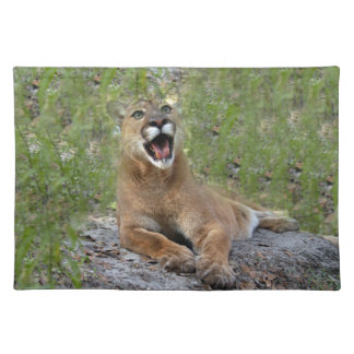 Cougar 019 placemat
