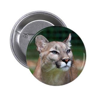 Cougar beautiful photo button, pin, gift