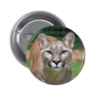 Cougar beautiful photo button pin gift