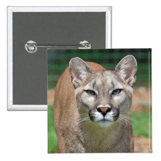 Cougar mountain lion beautiful photo button pin