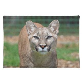 Cougar, mountain lion close-up photo placemat