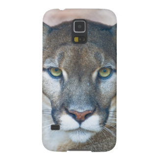 Cougar, mountain lion, Florida panther, Puma Case For Galaxy S5