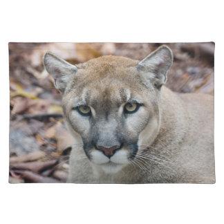 Cougar, mountain lion, Florida panther, Puma Placemat