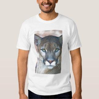 Cougar, mountain lion, Florida panther, Puma Shirts
