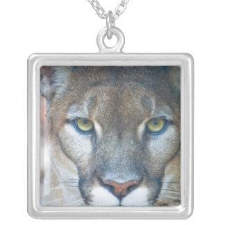 Cougar, mountain lion, Florida panther, Puma Square Pendant Necklace