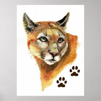 Cougar Mountain Lion Print
