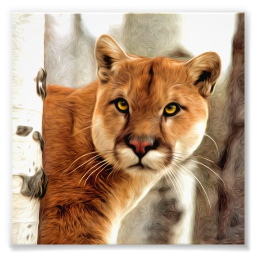 Cougar Photo Painting Photographic Print