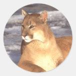 Cougar Rest Round Stickers