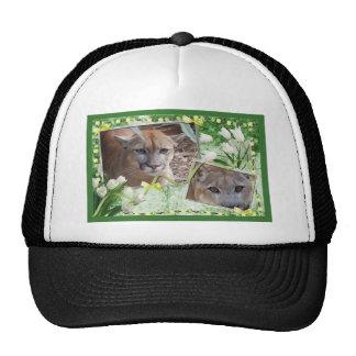 cougar-st-patricks-0020 mesh hats