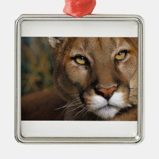 Cougar Stare Metal Ornament