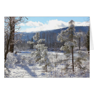Council Grove State Park Greeting Card