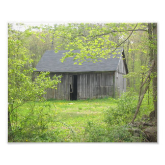 Country Barn In Spring Photographic Print