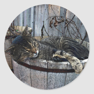 Country Cat Sticker