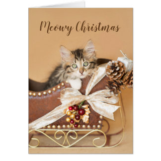 Country Christmas Kitten in Sleigh Card