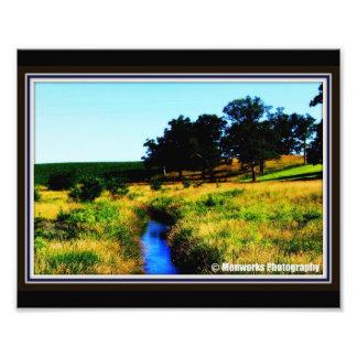 Country Creek Art Photo