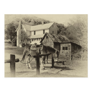 Country Farm Scene Post Card