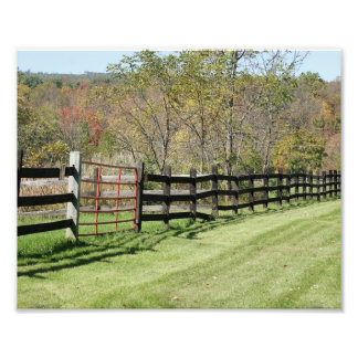 Country Fence Boundry 10x8 Photograph Print