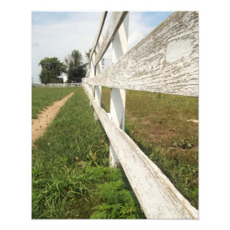 Country Fence Photo Print