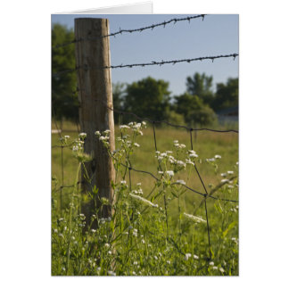 Country Fence Post and Wildflowers Card