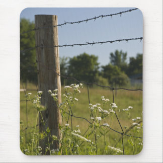 Country Fence Post and Wildflowers Mouse Pad