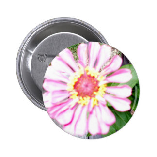 Country Flower Keepsake Collection Pinback Buttons