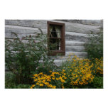 Country Flowers Posters