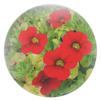Country Garden Floral Plate