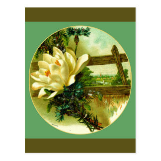 Country Garden Landscape Postcard