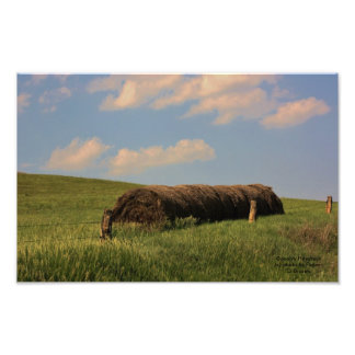 Country Haystack Photo