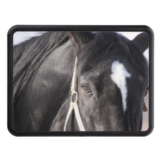 country horses eye Trailer Hitch Cover