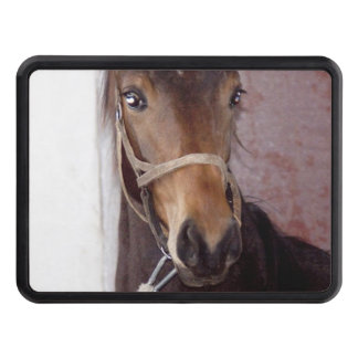 country horses Trailer Hitch Cover